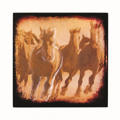 Born Free Plaque
