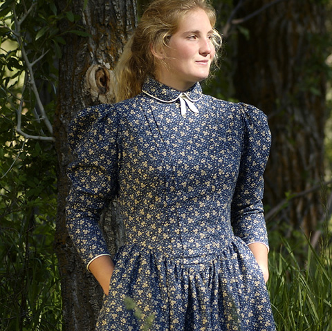 Old West Dress- School Marm